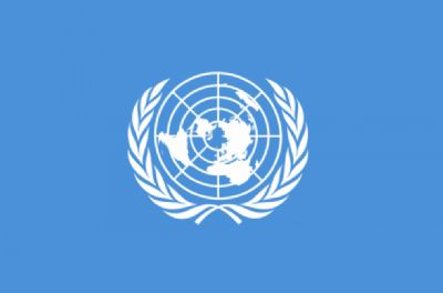 UNITED NATIONS - HAND WAVING FLAG (MEDIUM)